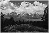 Visitor looking, Signal Mountain. Grand Teton National Park ( black and white)