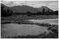 Beaver Dam and Teton Range. Grand Teton National Park ( black and white)