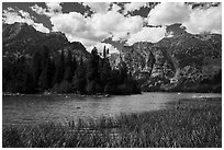 Grassy inlet, Phelps Lake. Grand Teton National Park ( black and white)