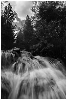 Waterfall,  Laurence S. Rockefeller Preserve. Grand Teton National Park ( black and white)