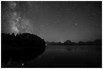 Trees, Milky Way and Teton Range above Jackson Lake. Grand Teton National Park ( black and white)