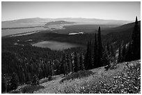 Bradley Lake and Taggart Lake from above. Grand Teton National Park ( black and white)