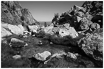 Creek at the Meadows, Garnet Canyon. Grand Teton National Park ( black and white)