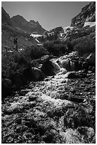 Cascading mountain stream, Garnet Canyon. Grand Teton National Park ( black and white)