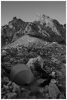 Camp at Lower Saddle and Grand Teton at sunset. Grand Teton National Park ( black and white)