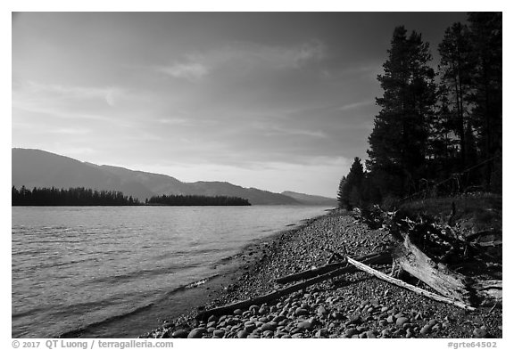 Beach, Colter Bay. Grand Teton National Park (black and white)