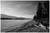 Beach, Colter Bay. Grand Teton National Park ( black and white)