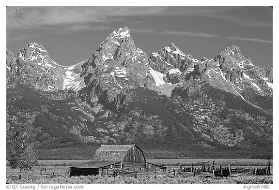 Moulton Barn and Grand Tetons, morning. Grand Teton National Park (black and white)