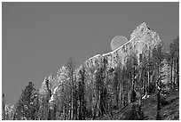 Moon and Grand Teton. Grand Teton National Park ( black and white)