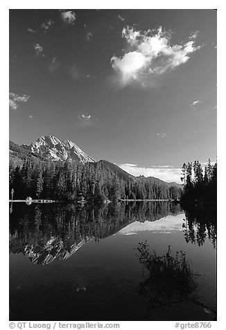 Mt Moran reflected in Leigh Lake, morning. Grand Teton National Park (black and white)