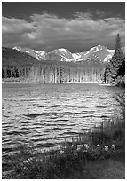 Windy morning, Sprague Lake. Rocky Mountain National Park, Colorado, USA. (black and white)