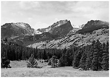 Hallett Peak and Flattop Mountain in autumn. Rocky Mountain National Park ( black and white)