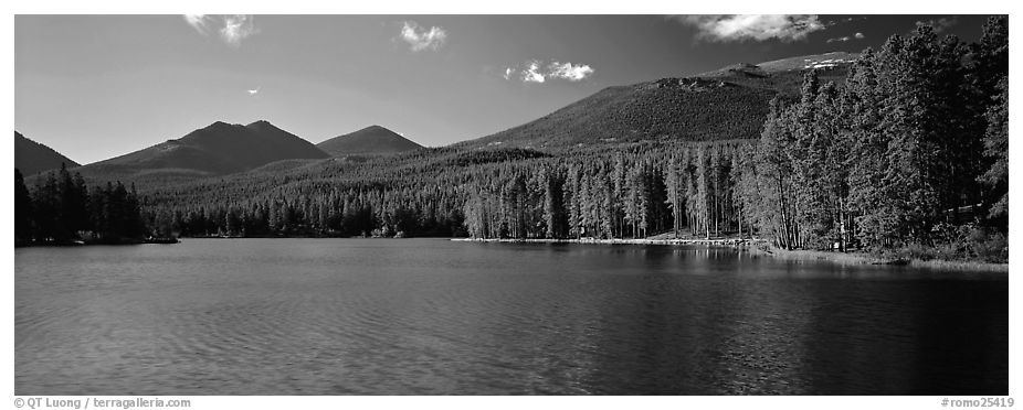 Clear lake with forested shores. Rocky Mountain National Park (black and white)