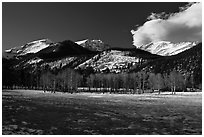 Aspens and mountains, West Horseshoe Park, winter. Rocky Mountain National Park ( black and white)