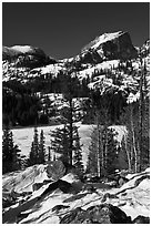 Bear Lake, winter morning. Rocky Mountain National Park ( black and white)