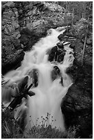 Adams Falls. Rocky Mountain National Park, Colorado, USA. (black and white)