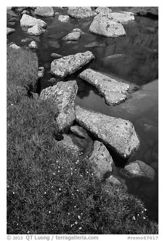Alpine meadow and lake with boulders. Rocky Mountain National Park (black and white)