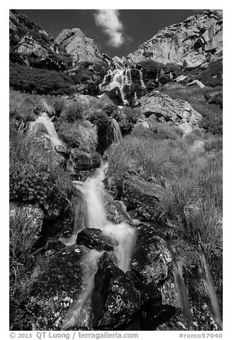 Alpine cascades. Rocky Mountain National Park (black and white)