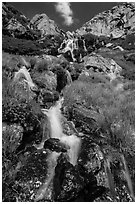 Alpine cascades. Rocky Mountain National Park ( black and white)