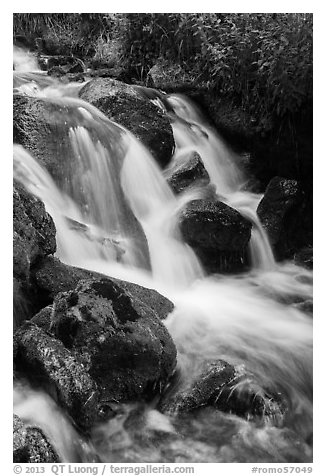 Stream cascading over rocks. Rocky Mountain National Park (black and white)