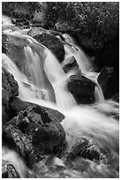 Stream cascading over rocks. Rocky Mountain National Park ( black and white)