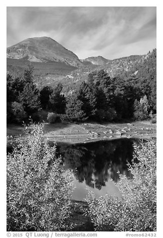 Copeland Lake in autumn. Rocky Mountain National Park (black and white)