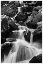 Calypso Cascades detail. Rocky Mountain National Park ( black and white)