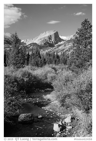 Creek and Hallet Peak in autumn. Rocky Mountain National Park (black and white)