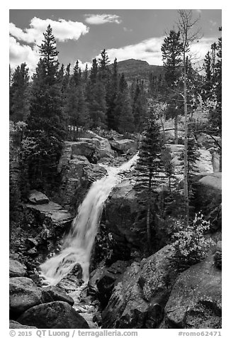 Alberta Falls and mountains. Rocky Mountain National Park (black and white)