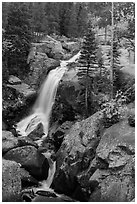 Alberta Falls in autumn. Rocky Mountain National Park ( black and white)