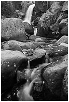 Cascade and Alberta Falls. Rocky Mountain National Park ( black and white)