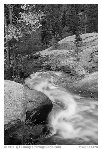 Brink of Alberta Falls. Rocky Mountain National Park (black and white)