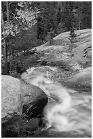 Brink of Alberta Falls. Rocky Mountain National Park ( black and white)
