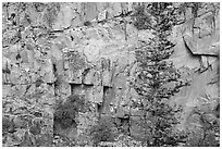 Walls of gorge. Rocky Mountain National Park ( black and white)