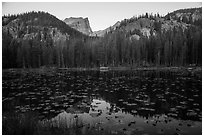 Hallet Peak above Nymph Lake at sunrise. Rocky Mountain National Park ( black and white)