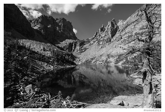 Emerald Lake. Rocky Mountain National Park (black and white)