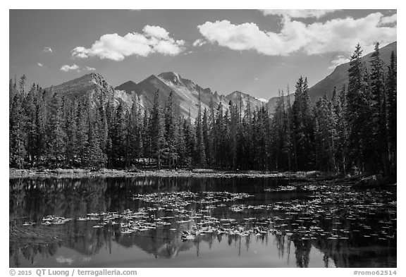 Longs Peak reflected in Nymph Lake. Rocky Mountain National Park (black and white)