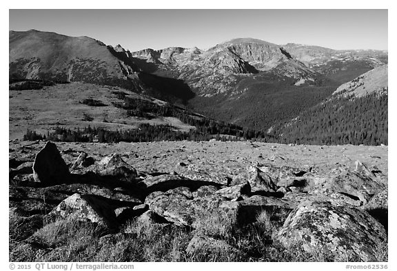Boulders and Forest Canyon. Rocky Mountain National Park (black and white)