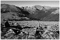 Boulders and Forest Canyon. Rocky Mountain National Park ( black and white)