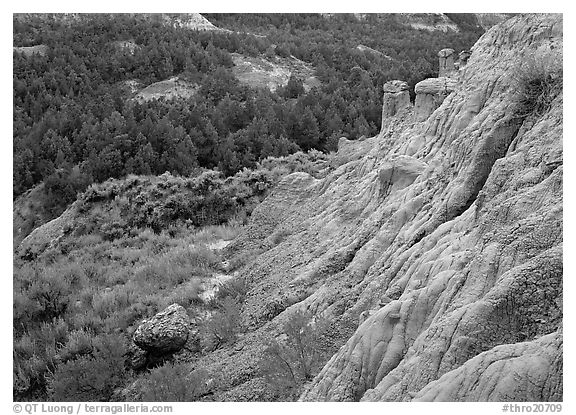Badlands with Caprock chimneys, North Unit. Theodore Roosevelt  National Park (black and white)