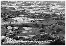 Prairie, trees, and badlands, Boicourt overlook, South Unit. Theodore Roosevelt  National Park ( black and white)