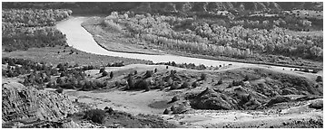 River, badlands, and aspens in the fall. Theodore Roosevelt  National Park (Panoramic black and white)