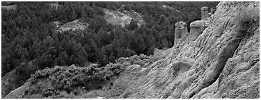 Badlands, caprock chimneys, and forest. Theodore Roosevelt  National Park (Panoramic black and white)