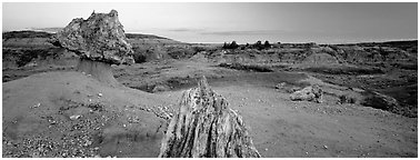Petrified wood in badlands landscape. Theodore Roosevelt National Park (Panoramic black and white)