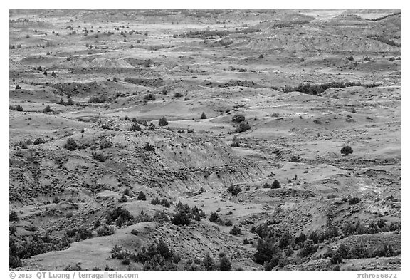 Painted Canyon. Theodore Roosevelt National Park (black and white)