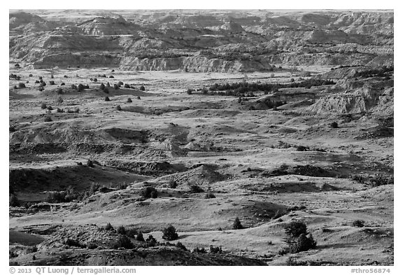 Grasslands and badlands, Painted Canyon. Theodore Roosevelt National Park (black and white)