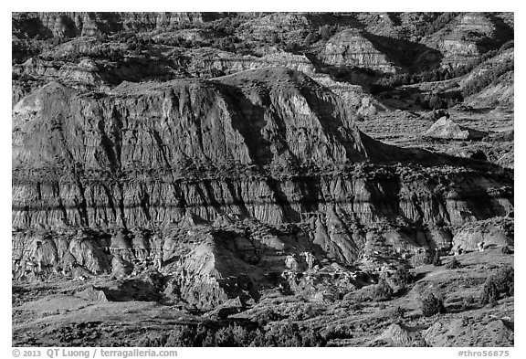 Badlands, Painted Canyon. Theodore Roosevelt National Park (black and white)