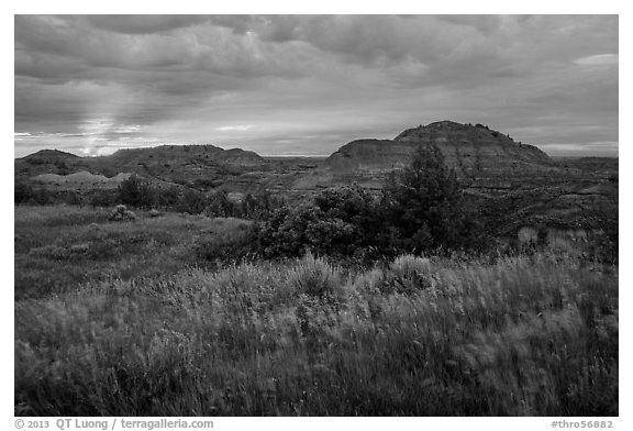 Sunset over grasses and badlands. Theodore Roosevelt National Park (black and white)