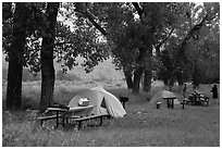 Cottonwood Campground. Theodore Roosevelt National Park ( black and white)