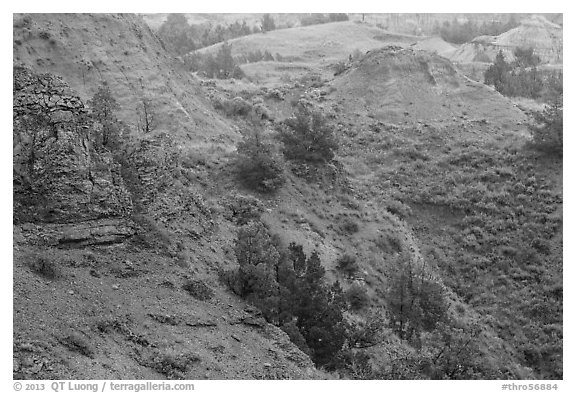 Red soil, Scoria Point. Theodore Roosevelt National Park (black and white)
